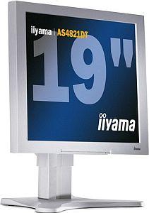 """iiyama AS4821DT, 19"""", 1280x1024, 2x cyfrowy"""