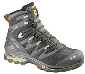 Salomon cosmic 4D GTX (mens)