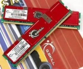 G.Skill NS Series DIMM Kit 2GB, DDR2-800, CL5-5-5-15 (F2-6400PHU2-2GBNS)