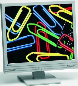 "Eizo FlexScan L767 grau, 19"", 1280x1024, analog/digital"