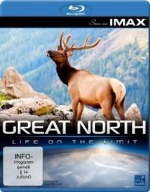 IMAX: Great North - Die Geheimnisse des Nordens (Blu-ray)