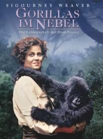 Gorillas im Nebel (DVD)
