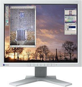 """Eizo FlexScan L685EX, 18.1"""", 1280x1024, 2x digital, Grau"""