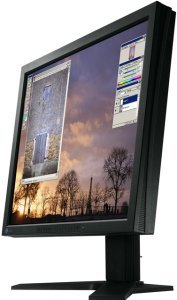 "Eizo FlexScan L685EX-K black, 18.1"", 1280x1024, 2x digital"