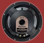 Pioneer TS-W1201DVC