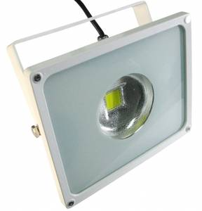 Bioledex LED floodlight 30W (LFL-3061-595)