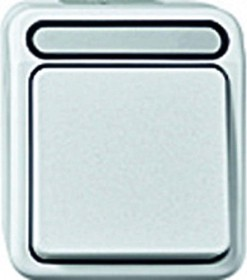 Merten Aquastar Wipp-Kontrollschalter, polarweiß (MEG3106-8019)