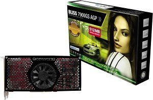Gainward BLISS GeForce 7900 GS Golden Sample,  512MB GDDR3, 2x DVI, TV-out, AGP (8453)