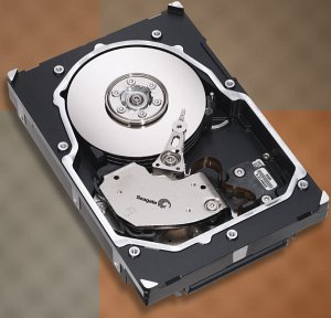 Seagate Cheetah 15K.5 73GB, SAS (ST373455SS)