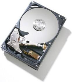 HGST Deskstar P7K500 250GB, SATA 3Gb/s (HDP725025GLA380)