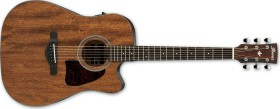 Ibanez AW54CE OPN Open Pore Natural