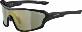 Alpina Lyron Shield P black matt/polarisation brown (A8627.5.31)