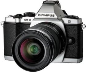 Olympus OM-D E-M5 silber mit Objektiv M.Zuiko digital 14-42mm (V204041SE000)