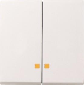 Gira System 55 Wippe 2fach, reinweiß glänzend (0631 03)