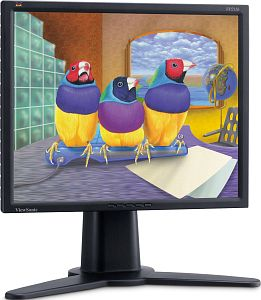 "ViewSonic VP211b, 21.3"", 1600x1200 analog/digital"