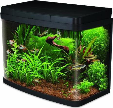 Interped insight aquarium 40l ab 132 49 at 2018 for Aquarium heizen