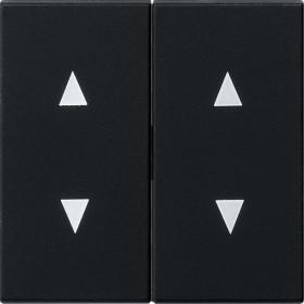 Gira System 55 Wippe 2fach, schwarz matt (1150 005)
