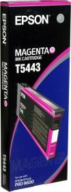 Epson Tinte T5443 magenta (C13T544300)