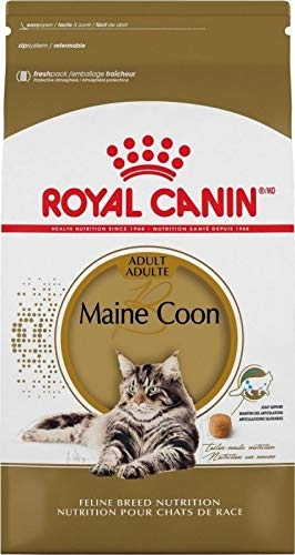 Royal Canin Maine Coon 31 10kg Starting From 163 59 99 2019