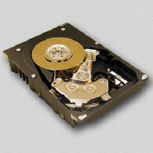 HGST Ultrastar 15K73 36GB U320-Fibre Channel (HUS157336ELF200)