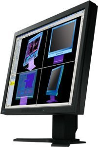 "Eizo FlexScan L985EX-K black, 21.3"", 1600x1200, analog/digital"