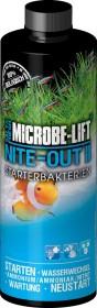 Microbe-Lift Nite-Out II Starterbakterien, 3.785l (NITEHG1)