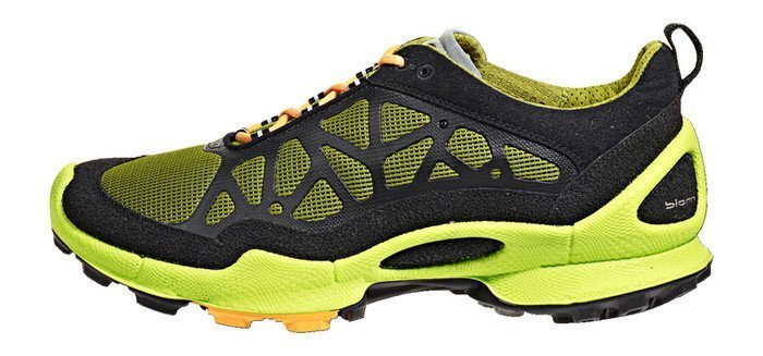 Ecco Biom Trail (mens) -- ©Globetrotter