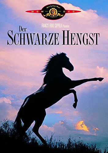 Der schwarze Hengst -- via Amazon Partnerprogramm