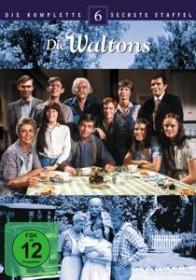 Die Waltons Staffel 6 (DVD)