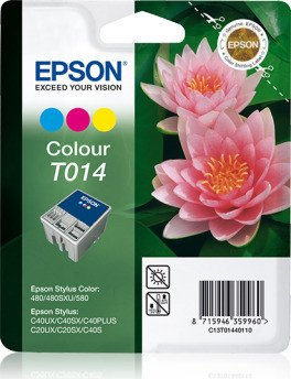 Epson T014 ink coloured (C13T01440110)