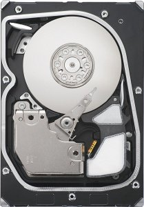 Seagate Cheetah NS 300GB Fibre Channel 4Gb/s (ST3300955FC)