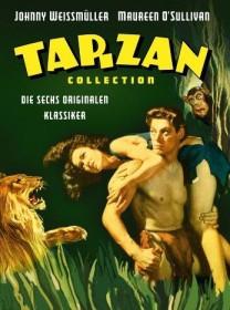 Tarzan Box
