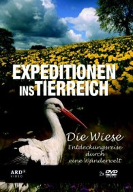 Expeditionen ins Tierreich: Die Wiese