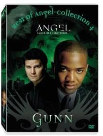 Angel - Jäger der Finsternis - Best of Gunn