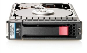 """HP 1TB 3G SAS 7.2K 3.5"""" DP MDL HDD (461137-B21)"""