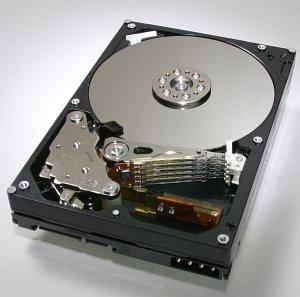 HGST Deskstar 7K500 500GB, SATA 3Gb/s (HDS725050KLA360/0A31619)