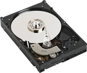 Western Digital WD RE3 750GB, SATA 3Gb/s (WD7502ABYS)