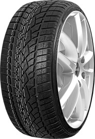 Dunlop SP Winter Sport 3D 255/30 R19 91W XL
