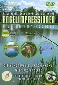 Ambiente: Angel Impressionen (DVD)