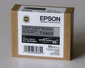 Epson Tinte T5809/T6309 schwarz hell hell (C13T580900/C13T630900)