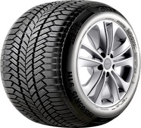 Giti GitiWinter W1 205/60 R16 96H XL