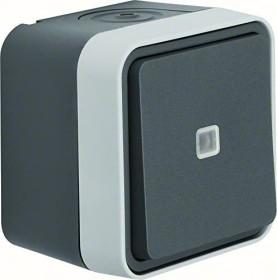 Berker W.1 control-toogle switch with lens, grey/light grey matte (31763505)