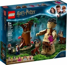 LEGO Harry Potter - Der Verbotene Wald: Begegnung mit Umbridge (75967)