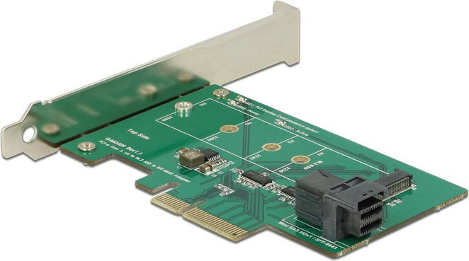 DeLOCK PCI Express Card > 1 x internal M.2 NVMe > 1 x internal SFF-8643 NVMe (89517)