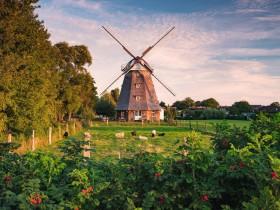Ravensburger Puzzle Windmühle an der Ostsee (16223)