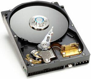 Western Digital WD Protégé 80GB, IDE (WD800EB)
