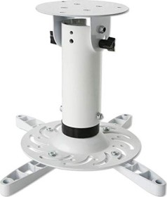 Techly Deckenhalterung weiß (ICA-PM 200WH)