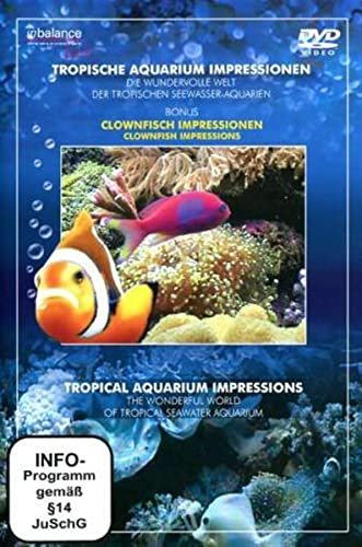 Tropische Aquarium Impressionen -- via Amazon Partnerprogramm