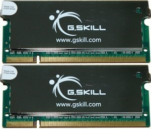 G.Skill SA Series SO-DIMM Kit 2GB, DDR2-667, CL4 (F2-5300CL4D-2GBSA)
