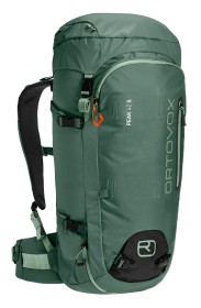 Ortovox Peak Light 42 S green forest (46422)